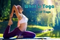 What is Yoga and 8 Limbs of Yoga