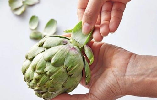 How to choose the right artichokes