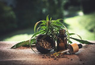 What Does THC Stand for and What Is It Exactly?