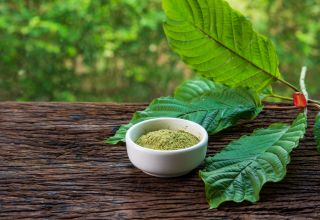What is Kratom Like: An Educational Guide With Everything to Know