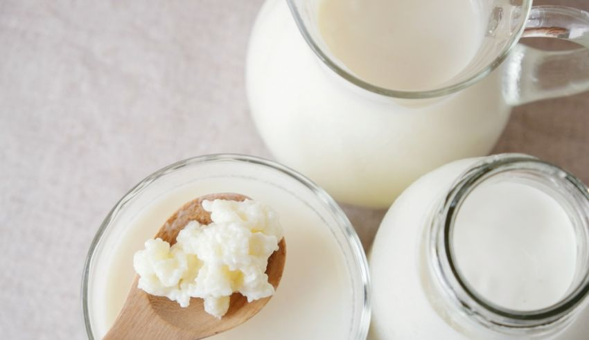 What is Milk Kefir and How to Make it at Home