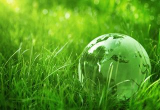 Easy Tips On How To Save Both The Earth And Your Money