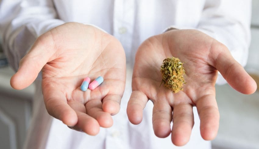 How to Seek a Prescription for Medical Marijuana: Your Complete Guide