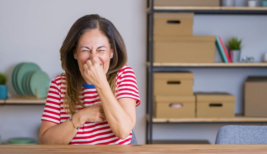 Smelly Apartment 101: A Guide to the Common Causes & Quickest Fixes