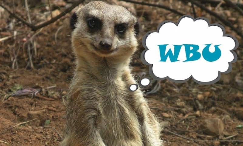 WBU Meaning