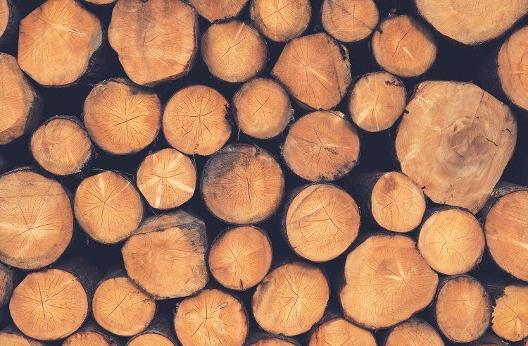 logging company